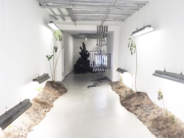 vue-d'exposition-galerie-bertrand-grimont